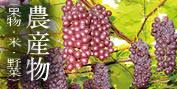 農産物(果物・米・野菜)